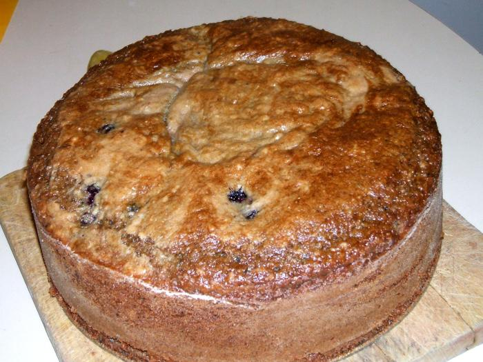 Blueberry-Gooseberry-Coconut Cake