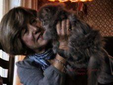 friend holding up her fluffy little kitten