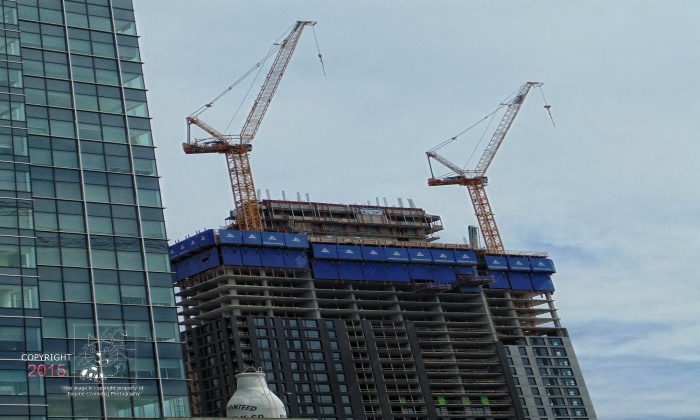 crane operation2