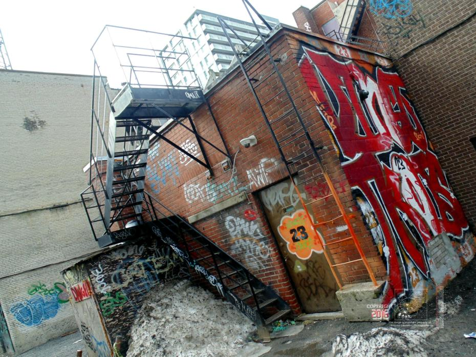 Graffiti covered brick walls indicate urban and societal decline.