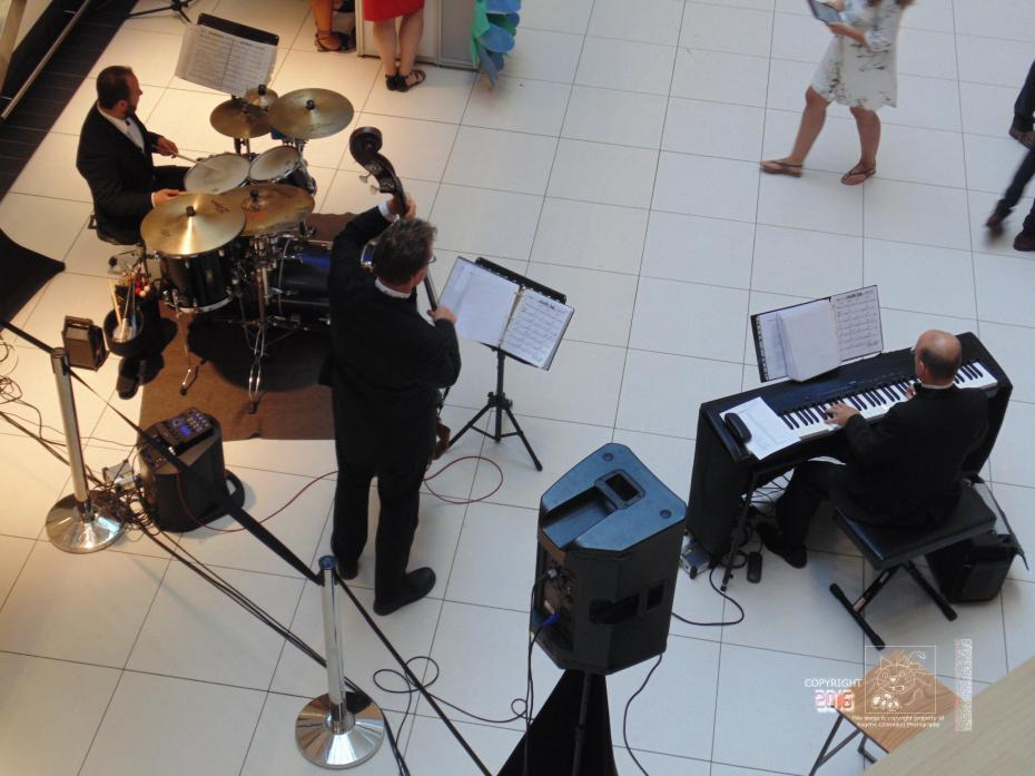 A relaxed frame of mind ensured by soothing sound of a musical trio permeated Ottawa's Rideau Center.