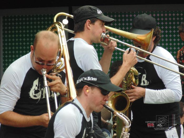 Witness the fact, a member of Jazz musical group is serious enough wearing ear protection.