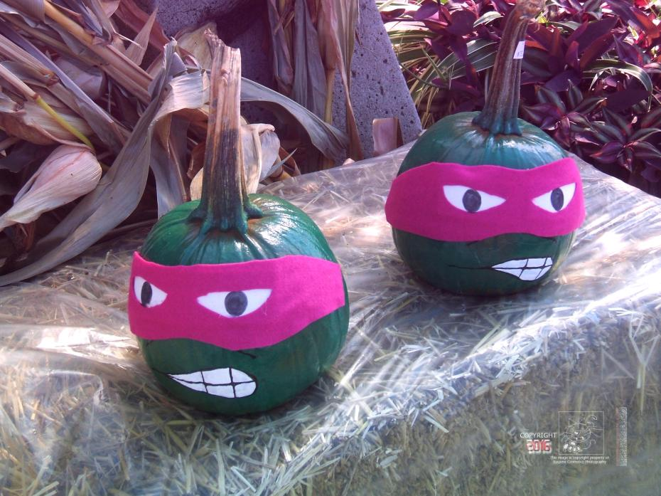Masked pumpkins disagree about summer really happened and already over.