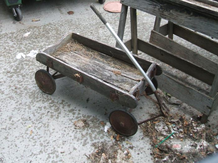 The ancient child's hand wagon littered with dried grass clippings rested amongst discarded items.