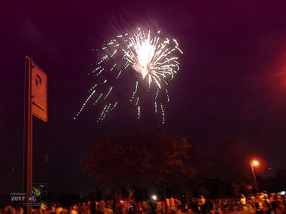 Late night fireworks create overhead glitter in dark sky eliciting many oohs and aahs from Canada Day fans.