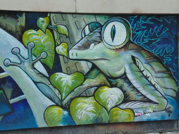 Climbing frog mural depicted in picture is one example of quality street art found in Montreal's east end.
