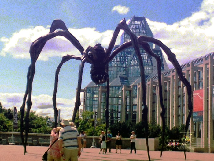 "Giant spiders inhabit Ottawa museum grounds attributed to ""green house effect"" from overabundance of Parliament hot air."