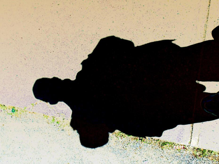 Irrelevant shadow image on sidewalk around noon on bright Summer day is interesting one.