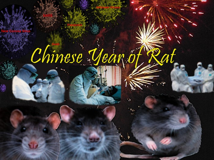 Chinese Year of Rat